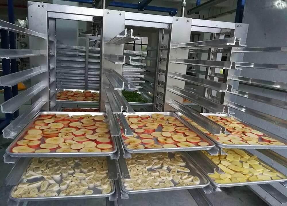 Вакуумный лиофильный шкаф для сушки фруктов и ягод